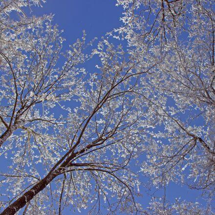 sky, snow, aesthetic, Canon EOS 600D