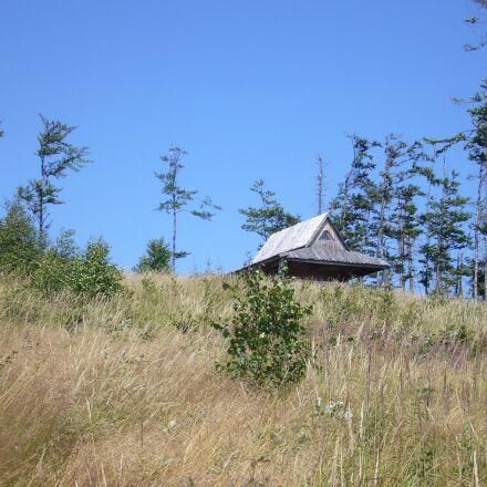 hut, meadow, forest, Panasonic DMC-LS2