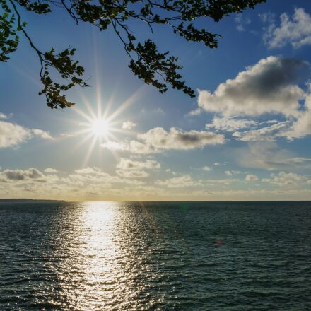 sea, baltic, tree, Sony ILCE-6000