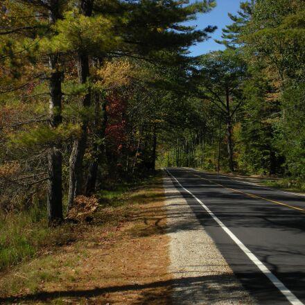 autumn, scenery, road, Nikon COOLPIX S210