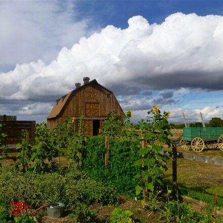 farm, survival, barn, Panasonic DMC-ZS20