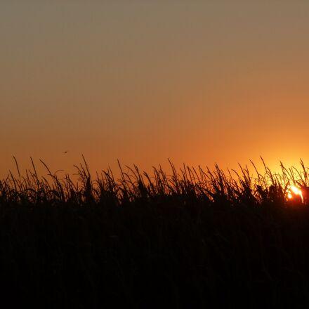 sunset, red, italy, Panasonic DMC-TZ18