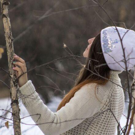 tree, nature, winter, Canon EOS 1100D