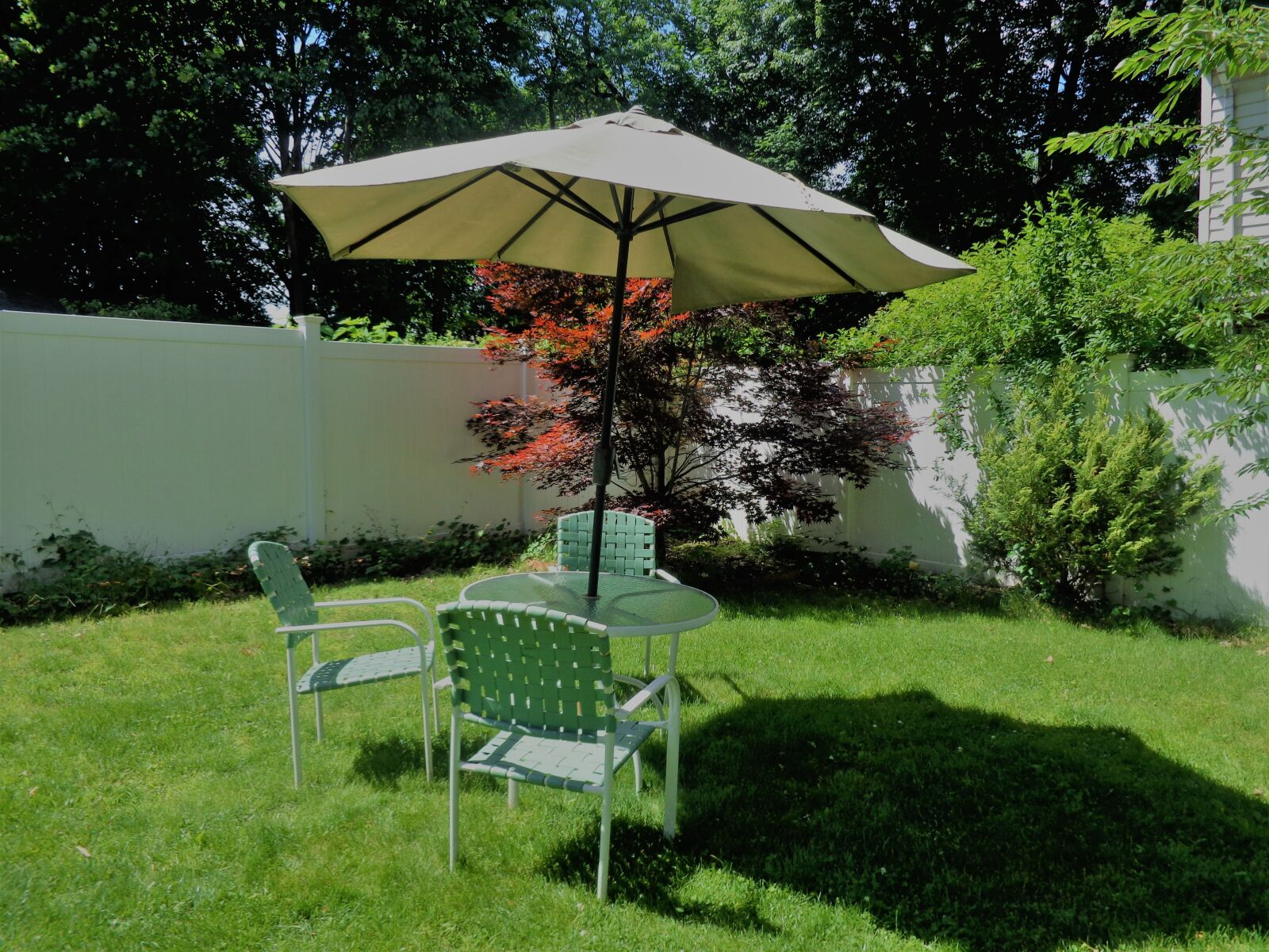 """Sony DSC-W690 sample photo. """"Lawn, lawn chairs, summer"""" photography"""