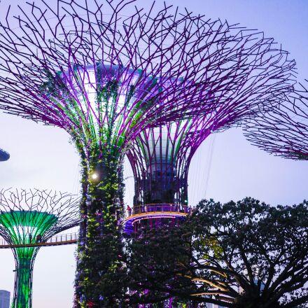 singapore, gardens by the, Panasonic DMC-GF6