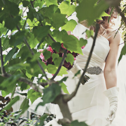 woman, flowers, leaves, white, Nikon D300