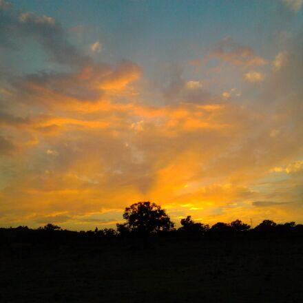solar, clouds, tree, Samsung GT-S5253