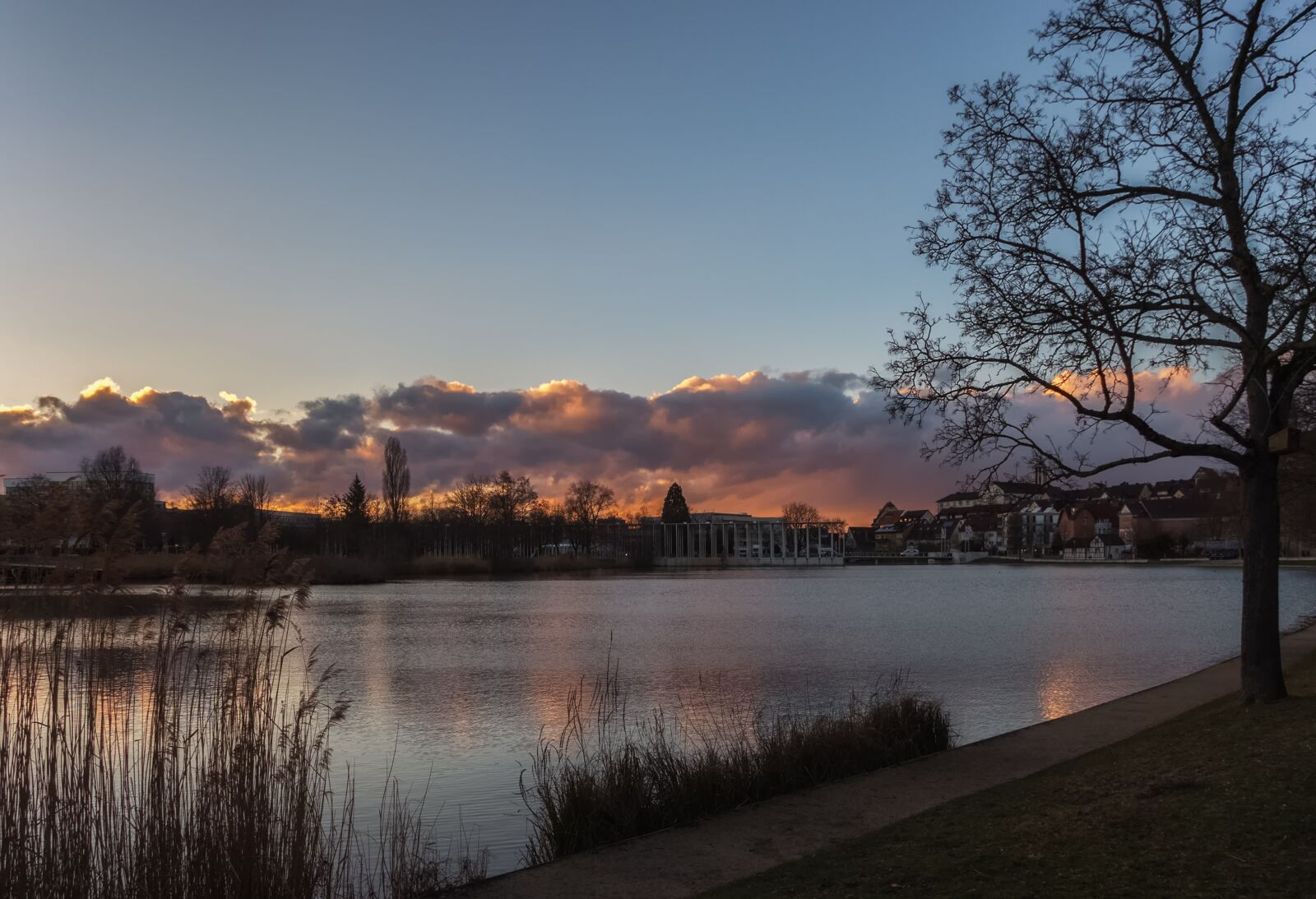 lake, park, nature