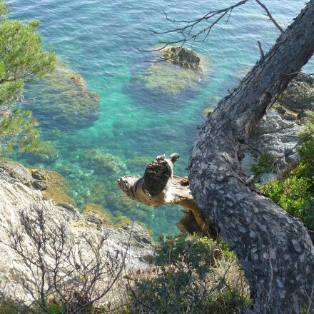 sea, mediterranean, rock, Panasonic DMC-FS10
