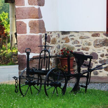 cart, oxen, garden, Canon EOS 100D