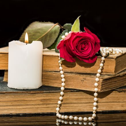 old books, rose, red, Canon EOS 750D