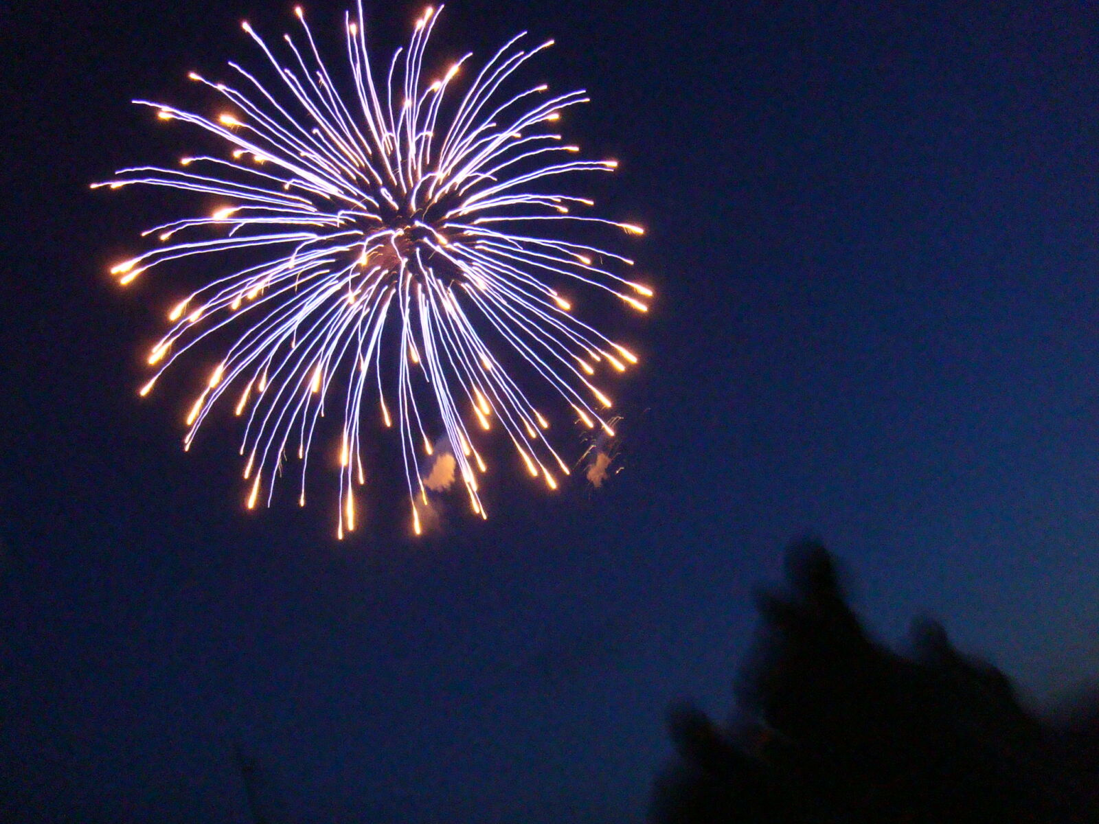 summer, firework