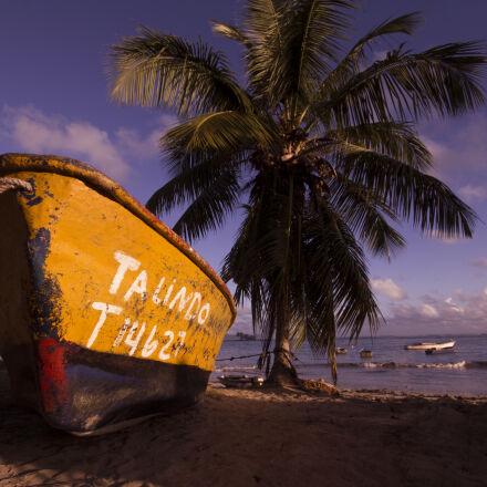 beach, boat, coconuts, sail, Canon EOS REBEL T2I