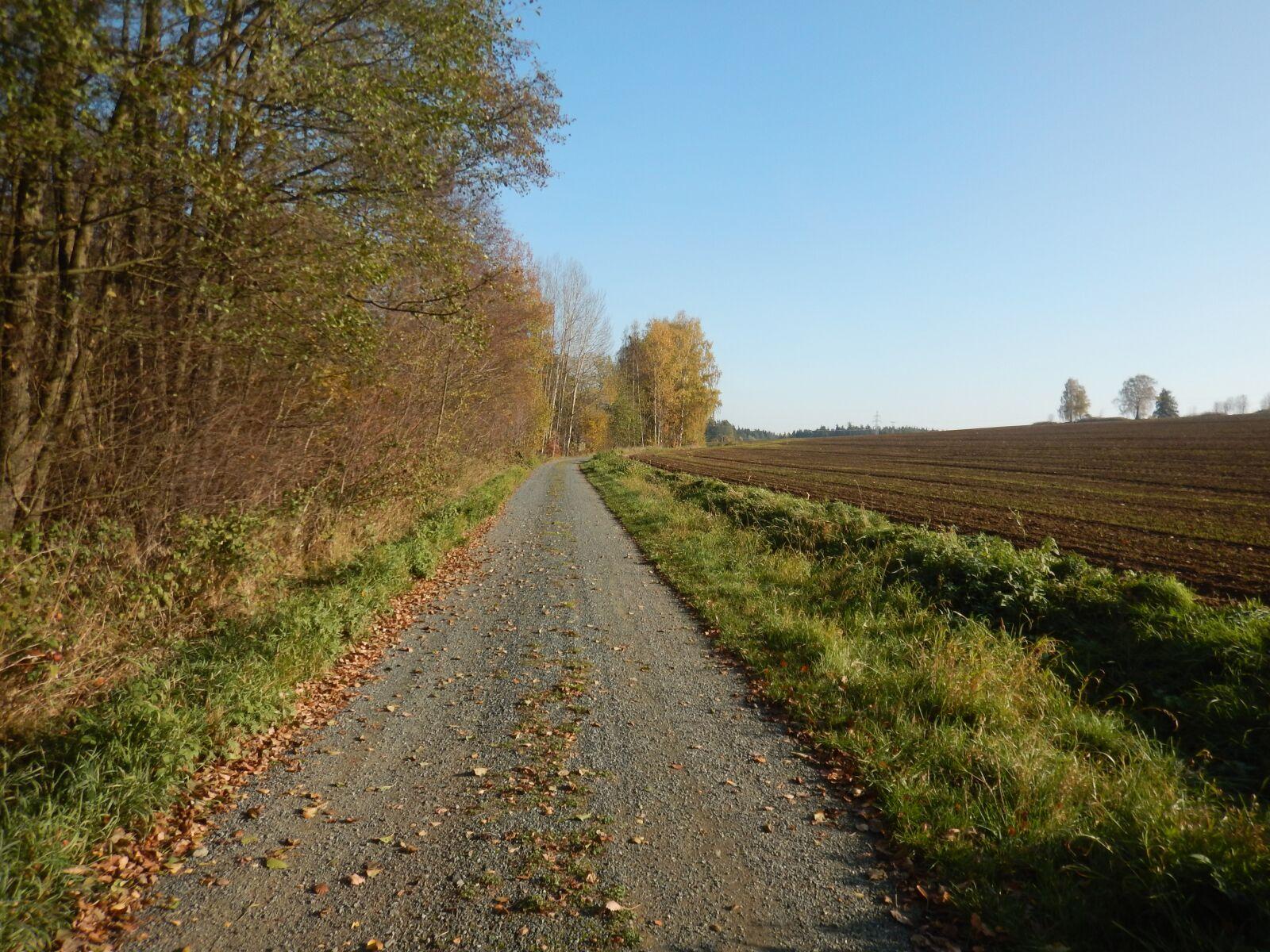 "Nikon Coolpix AW120 sample photo. ""Road, autumn, landscape"" photography"