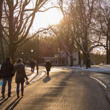 snow, people, street, trees, Sony SLT-A58