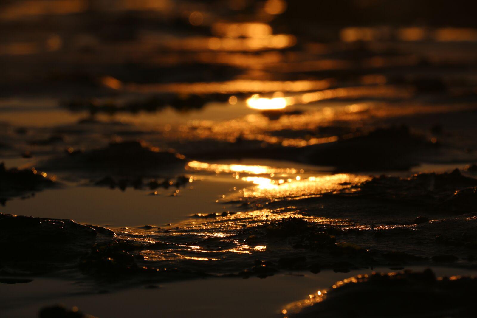 "Canon EOS 70D sample photo. ""Beach, sunset, mud"" photography"