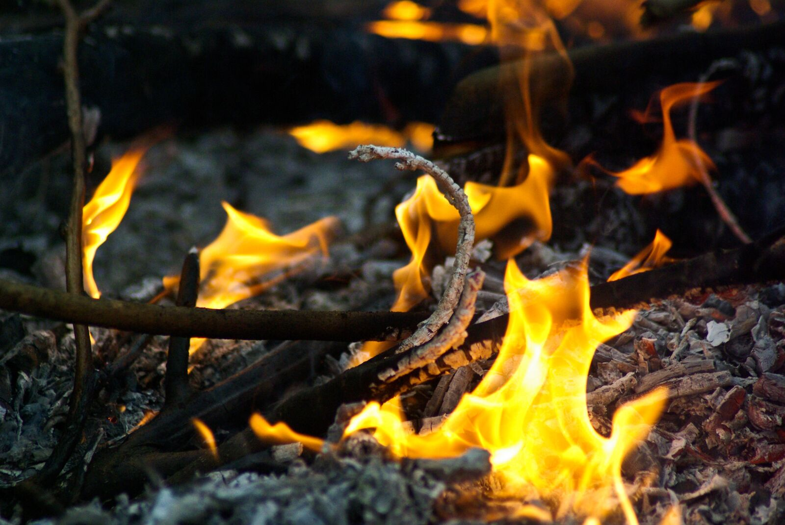 "Pentax K10D sample photo. ""Fire, ash, smoke"" photography"