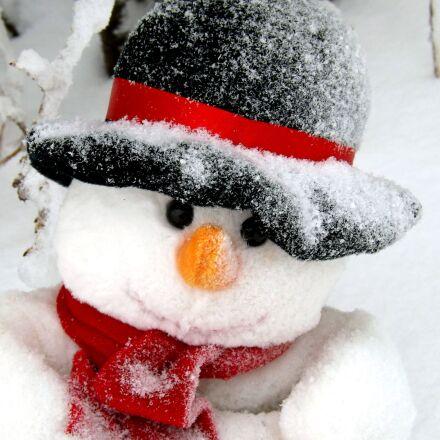 snowman, face, black hat, Fujifilm FinePix S4500