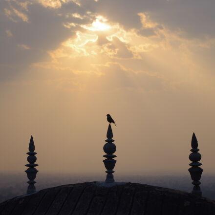 architecture, bird, clouds, nature, Pentax K-X