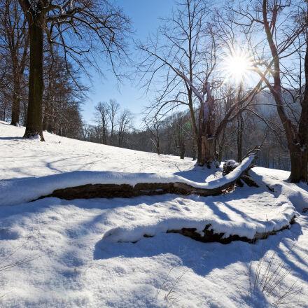 flare, hukvaldy, landscape, snow, Canon EOS 5D MARK II