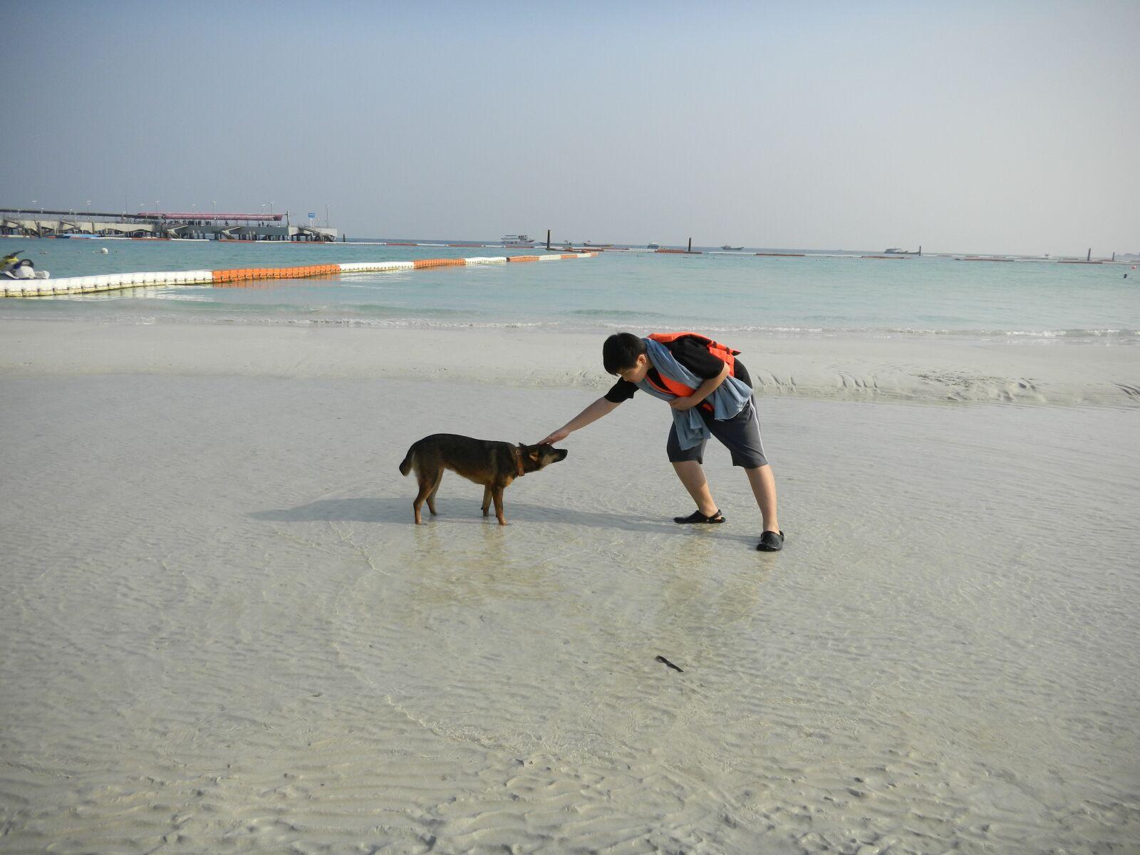 "Nikon Coolpix S1200pj sample photo. ""Sea, sand, puppy"" photography"