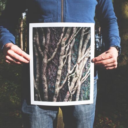 forest, hands, held, Canon EOS 5D MARK II