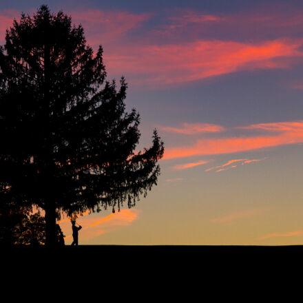 golf, summer, sunset, Canon EOS 60D