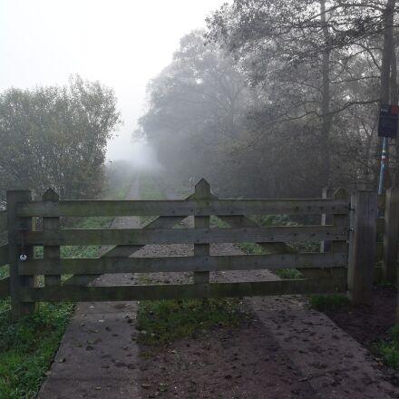 fence, fog, polder, Nikon 1 S2