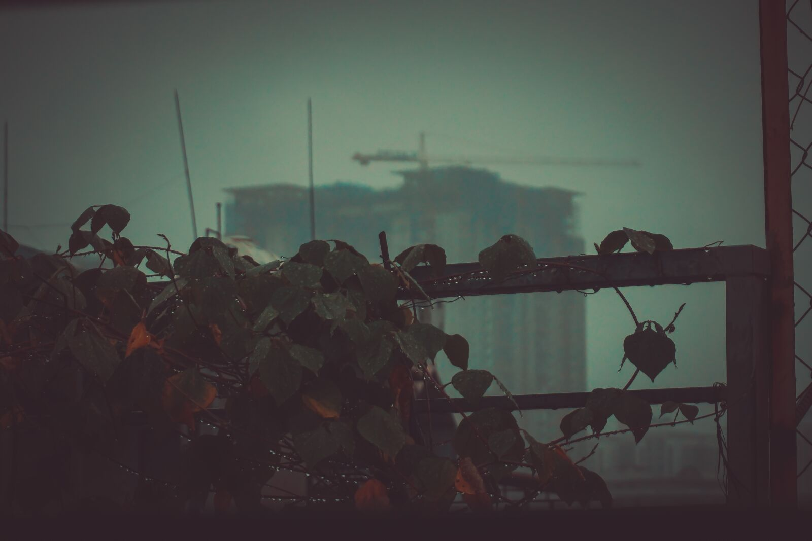 """Sony a6000 sample photo. """"Rain, vietnam, hanoi"""" photography"""