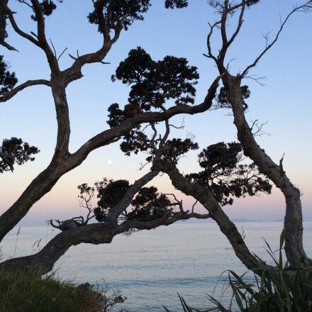 sunset, lakeside, lake, Apple iPad Air