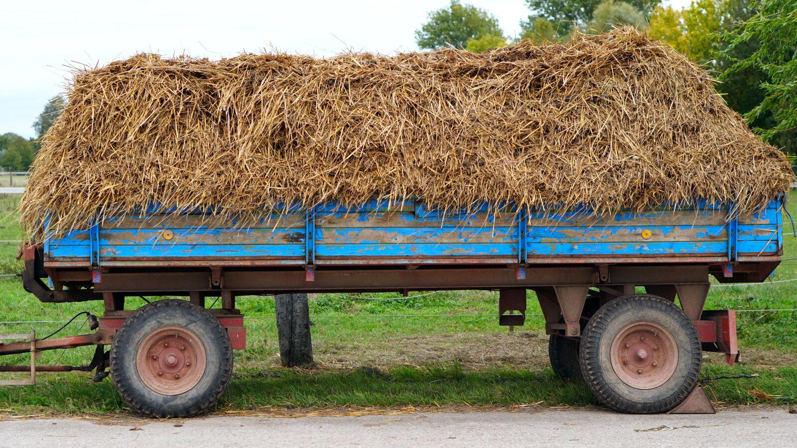 "Sony a6400 sample photo. ""Wagon, straw, hay"" photography"