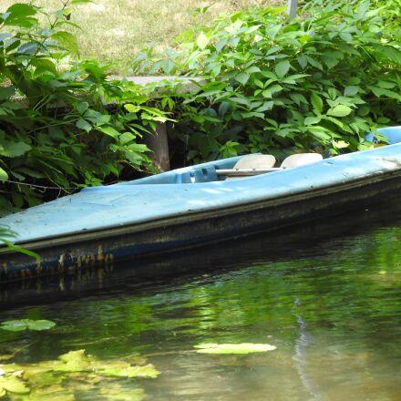 river, sprewa, riverbank, Nikon COOLPIX P900