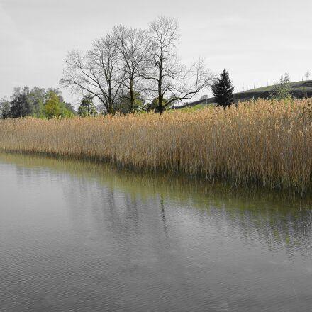 bank, nature, landscape, Nikon 1 S1
