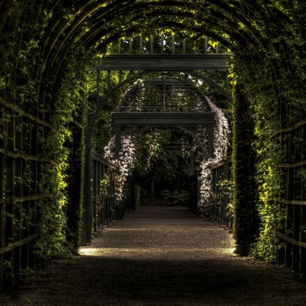 garden, path, way, park, Sony SLT-A58