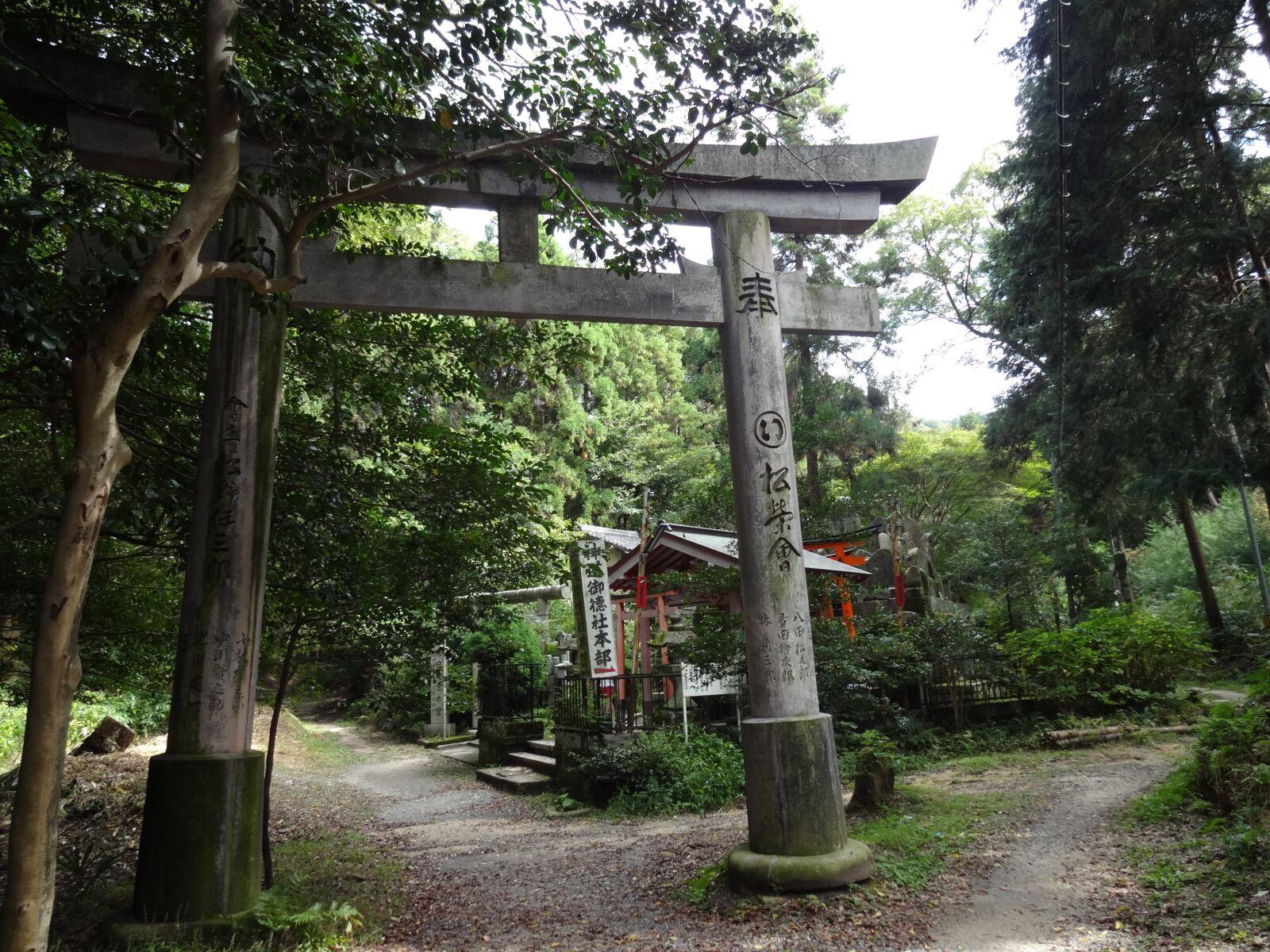fushimi, inari, japan