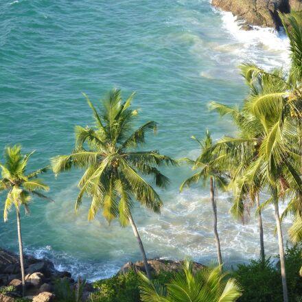paradise, sea, coconut, palm, Panasonic DMC-TS2