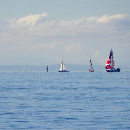 sailboats, sailing, water, Sony DSC-WX300