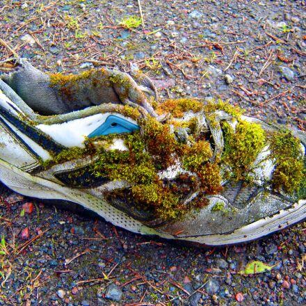shoe, sport, laziness, Sony DSC-P73