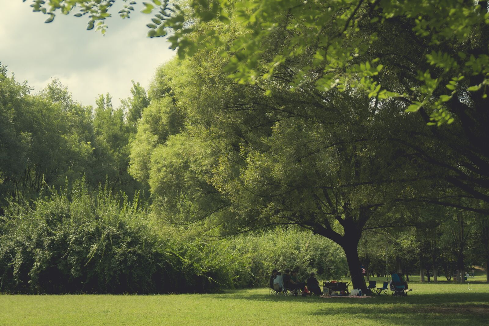 """Sony a6300 sample photo. """"People, green, grass"""" photography"""