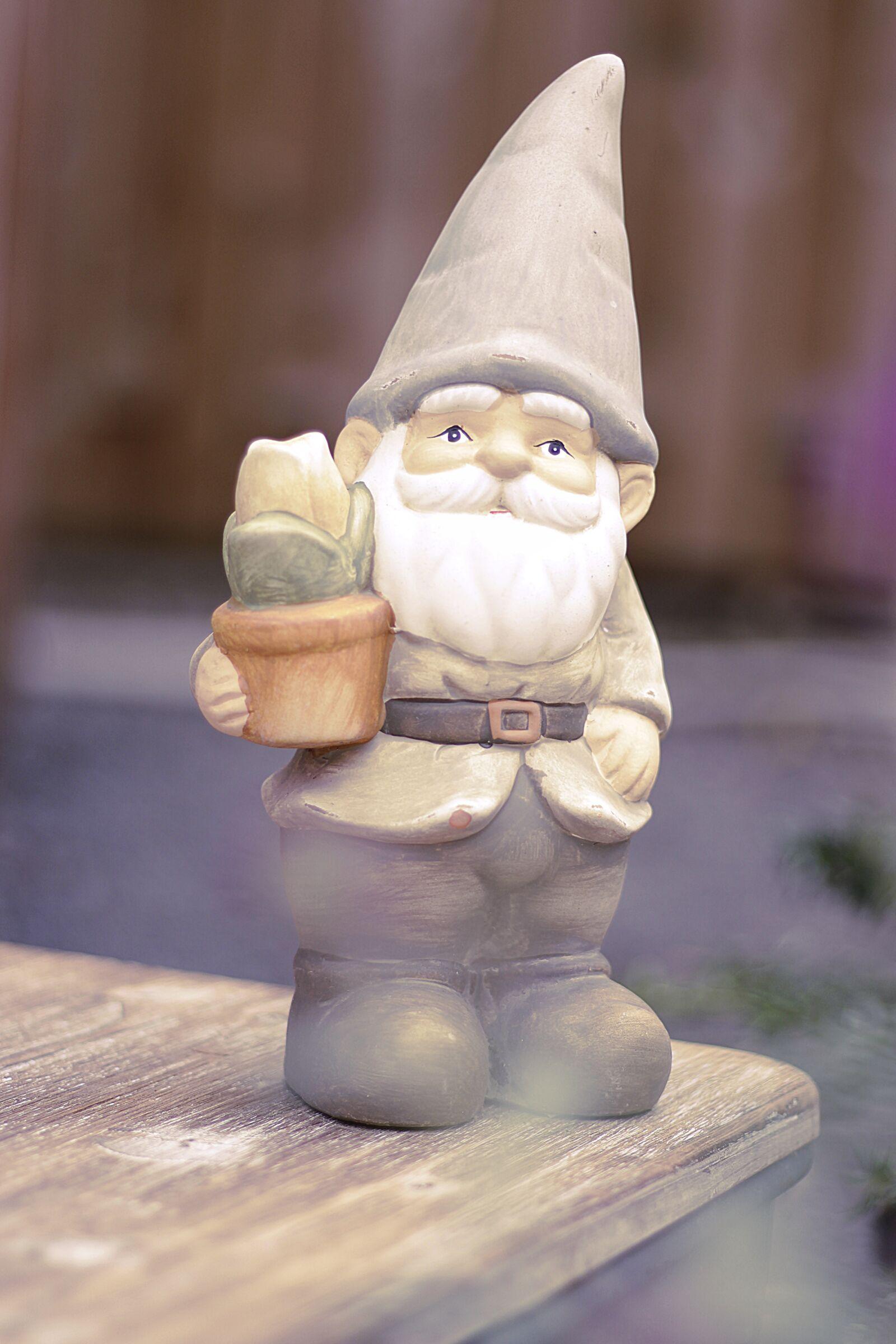 """Canon EOS 100D (EOS Rebel SL1 / EOS Kiss X7) sample photo. """"Garden gnome, dwarf, garden"""" photography"""