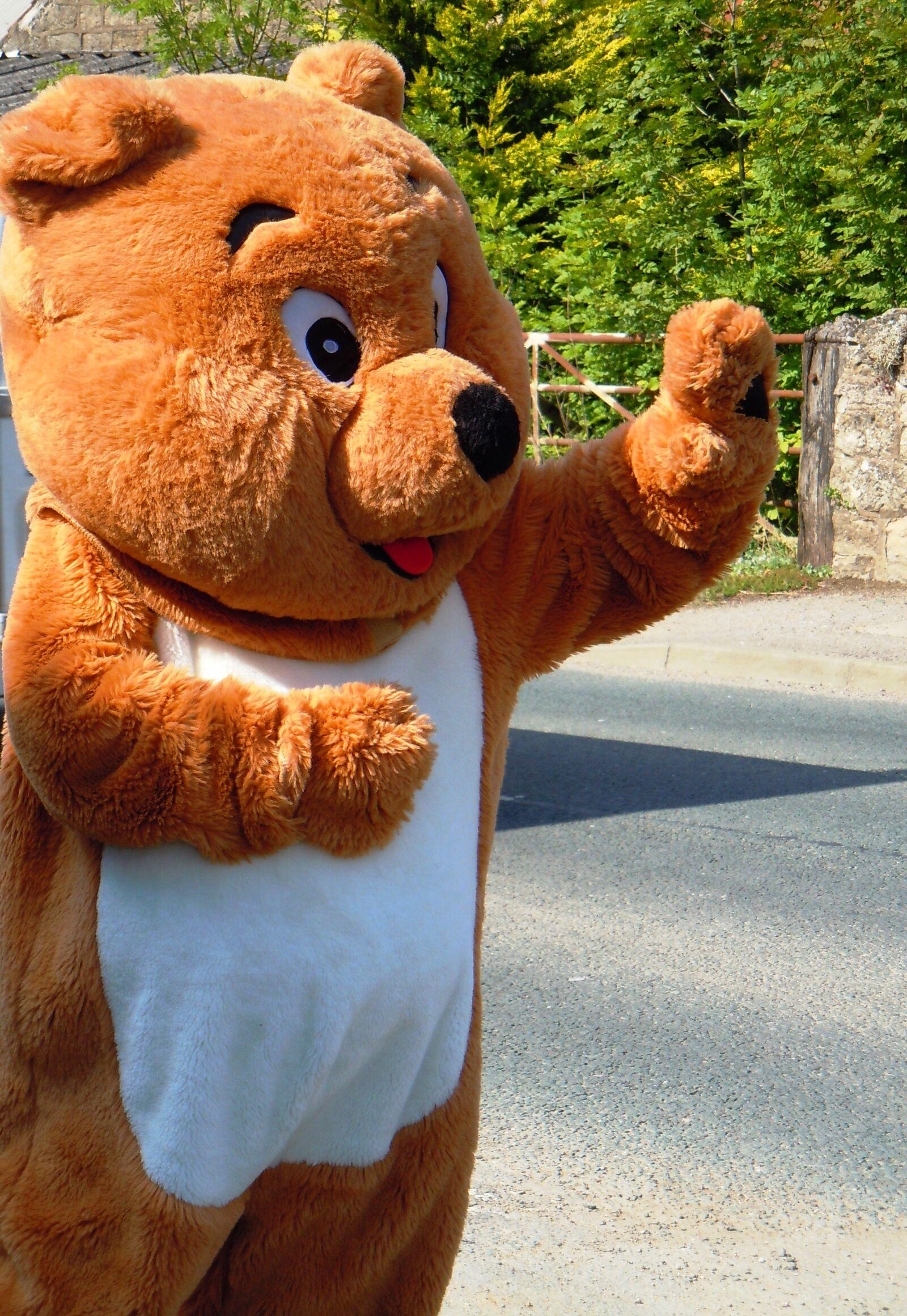 "Nikon Coolpix S8000 sample photo. ""Bear, teddy, bear"" photography"