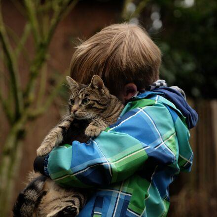 friendship, child, cat, Fujifilm X-T1