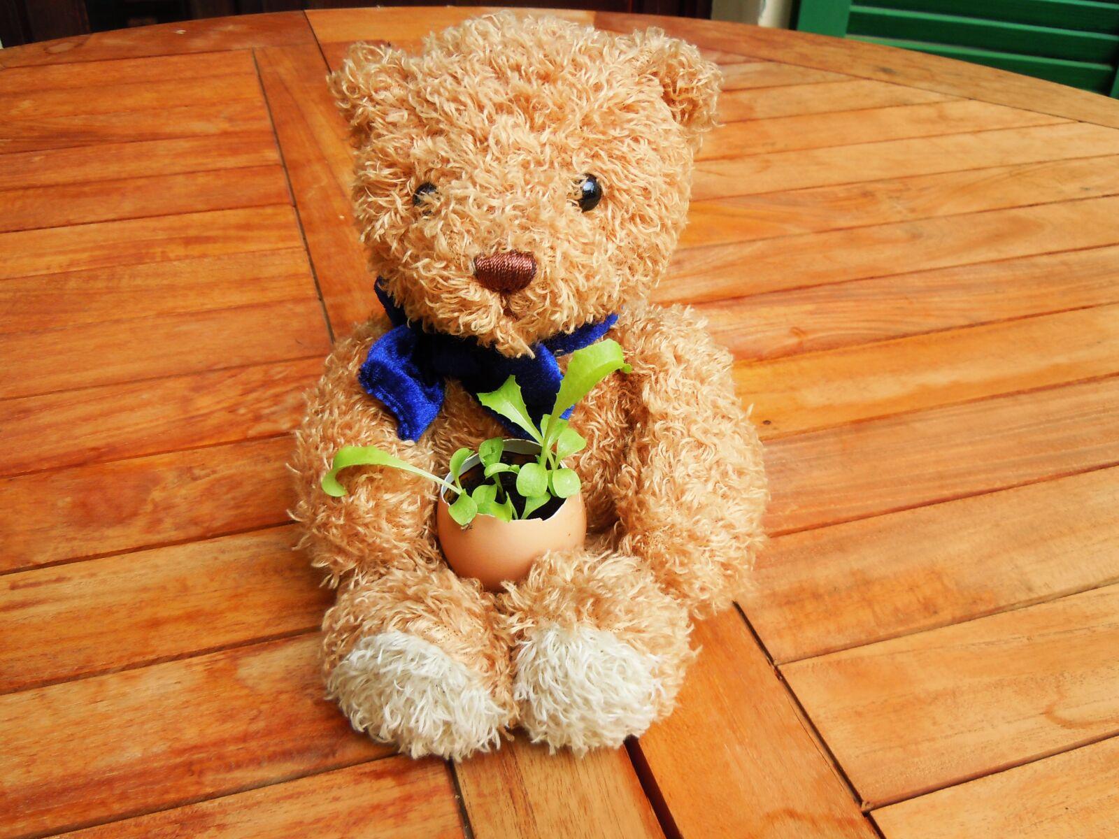 "Nikon Coolpix S8000 sample photo. ""Bear cub, egg, plant"" photography"