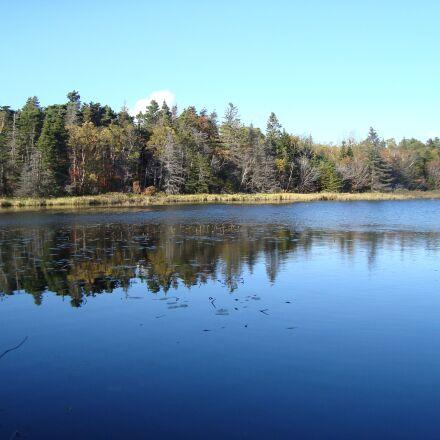 pond, trees, reflection, Sony DSC-W120