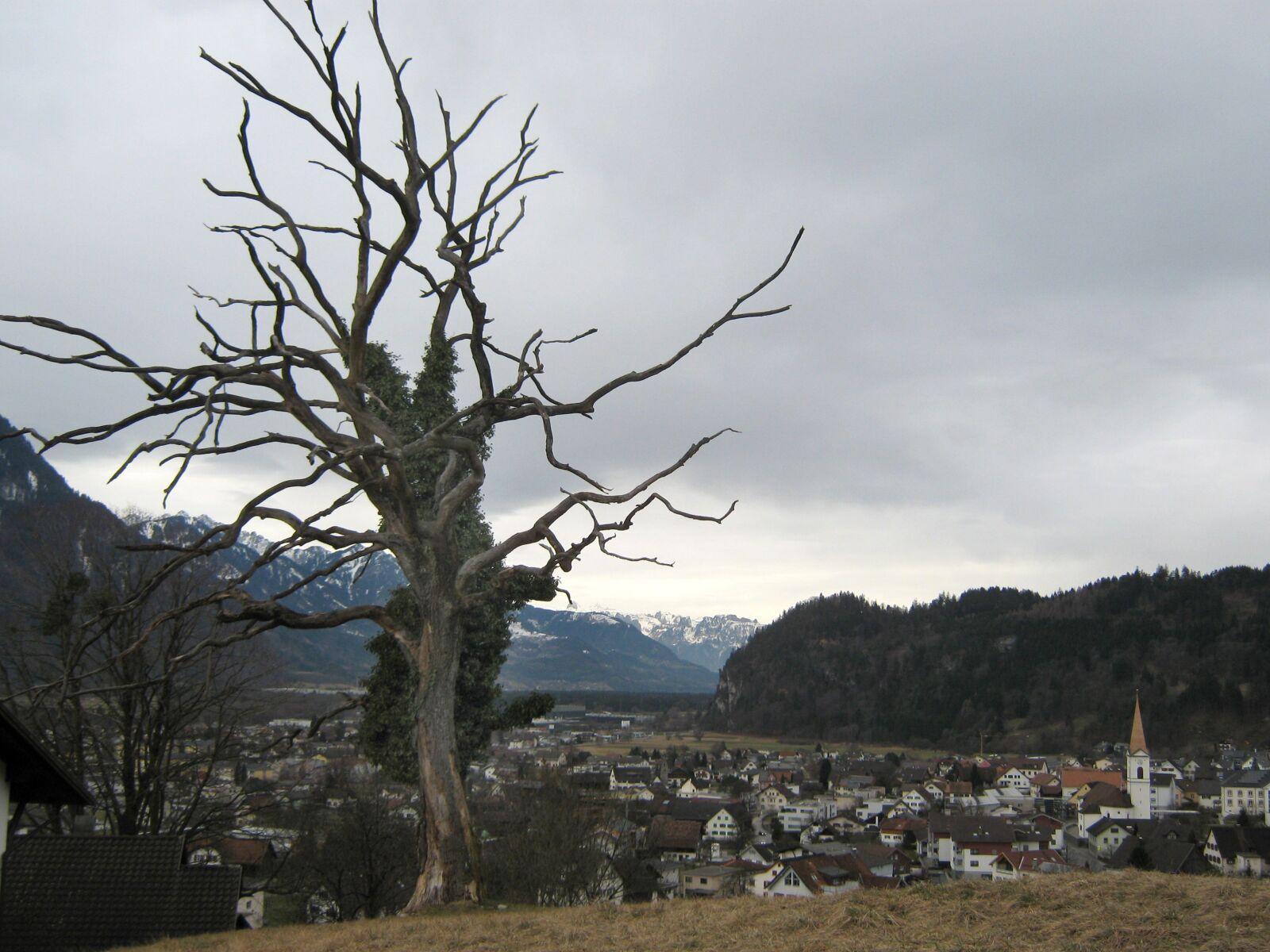 "Canon PowerShot A470 sample photo. ""Tree, village, nüziders"" photography"