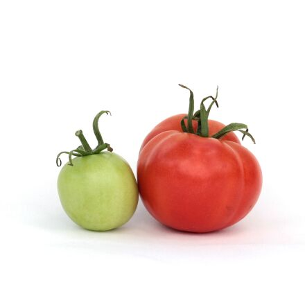 tomatoes, red, green, Canon EOS 60D
