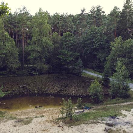 nature, sky, sand, forest, Canon EOS 5D MARK III