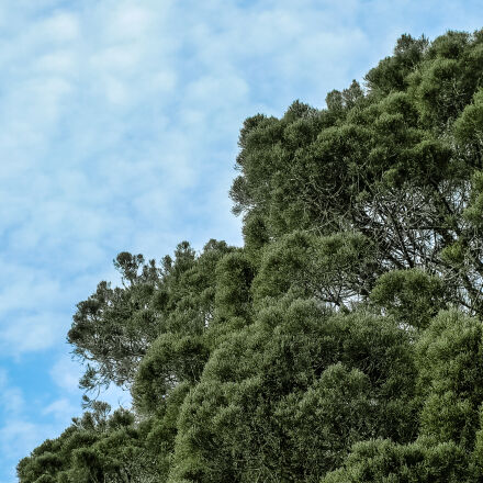 nature, sky, outdoors, scenic, Samsung NX1