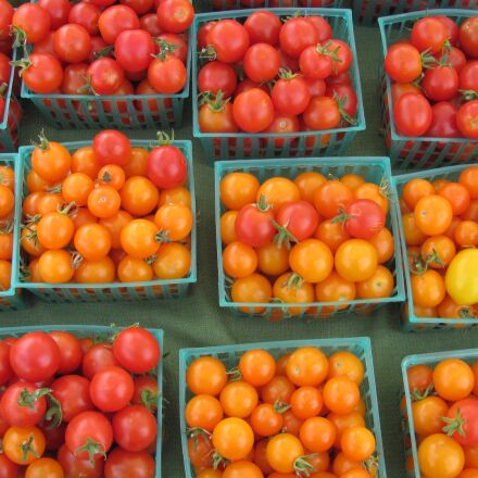 tomatoes, farmers market, healthy, Canon POWERSHOT SX120 IS