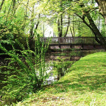 landscape, nature, water, Fujifilm FinePix S1800